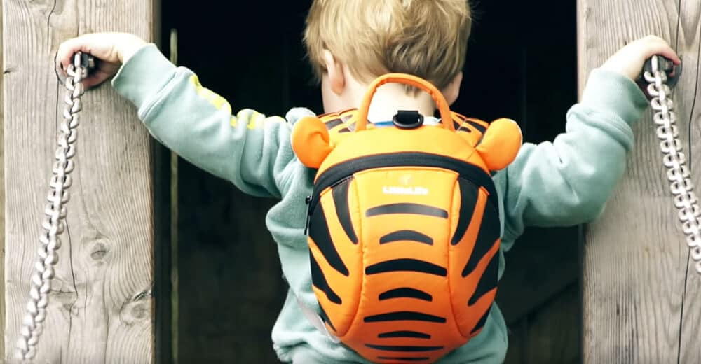 How to Choose a Backpack for a kid